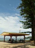 Manly beach 6 — Stok fotoğraf