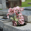 Grave Imagery of the Cemetary — Stock Photo