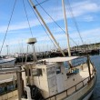 Geelong harbour side views from the esplenade and surrounding areas — Stock Photo
