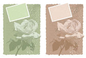 Vintage background with rose in two color variations — Stok Vektör