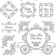 Set vintage vector ornaments — Stock Vector
