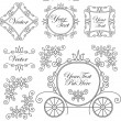 Set vintage vector ornaments — Stok Vektör #13640027