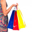 Shopping bags set in woman's hand isolated on white — Stock Photo #12465449