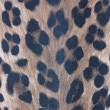 Stock Photo: Leopard pattern wallpaper