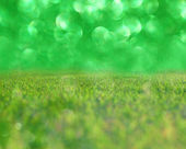 Green background of grass and defocused lights — Stock Photo