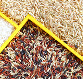 Assortment of rice in wooden box — Stock Photo