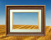 Złotą ramę i pejzaż pole — Zdjęcie stockowe