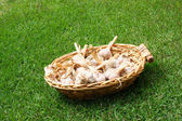 Garlic in a wicker basket — Stock Photo