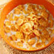 Bowl of cereal with milk — Stock Photo