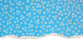 Blue torn paper with floral pattern — Stock Photo