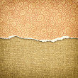 Orange torn paper edge  — Stock Photo