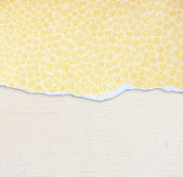 Canvas texture with vignette — Stock Photo