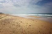 Open view of beach shore — Stock Photo