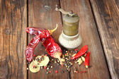 Metal spice grinder with red hot peppers and bay leaf — Foto de Stock