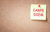Sticky note pinned to corckboard with the phrase carpe diem. room for text. — Stock Photo