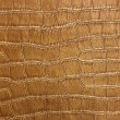 Stock Photo: Golden Crocodile Skin Texture and pattern, closeup