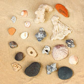 Stones rock and shells — Stock Photo