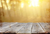 Planks in forest — Stock Photo