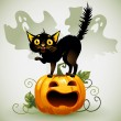 Scared black cat on a pumpkin and ghost. — Stockvector
