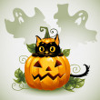 Black cat in a Halloween pumpkin and ghost. — Stock Vector #13639841