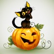 Black cat on pumpkin. — Stock Vector