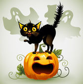 Scared black cat on a pumpkin and ghost. — Stock Vector