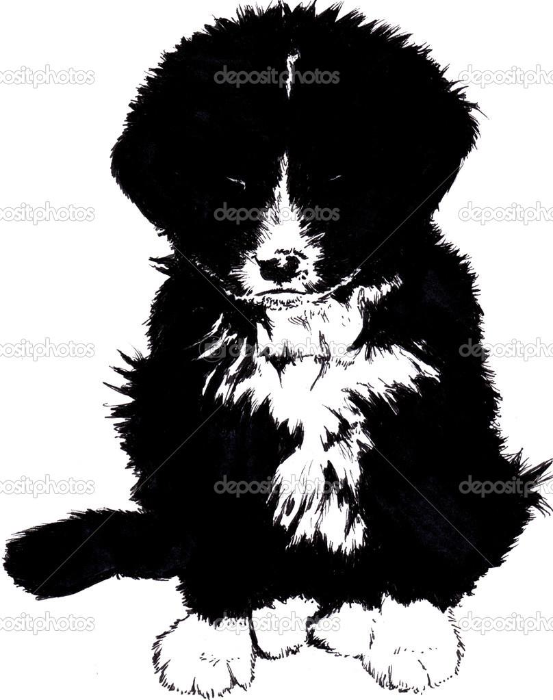 Простой рисунок черно-белый щенок ...: ru.depositphotos.com/16984607/stock-photo-simple-drawing-of-a-black...