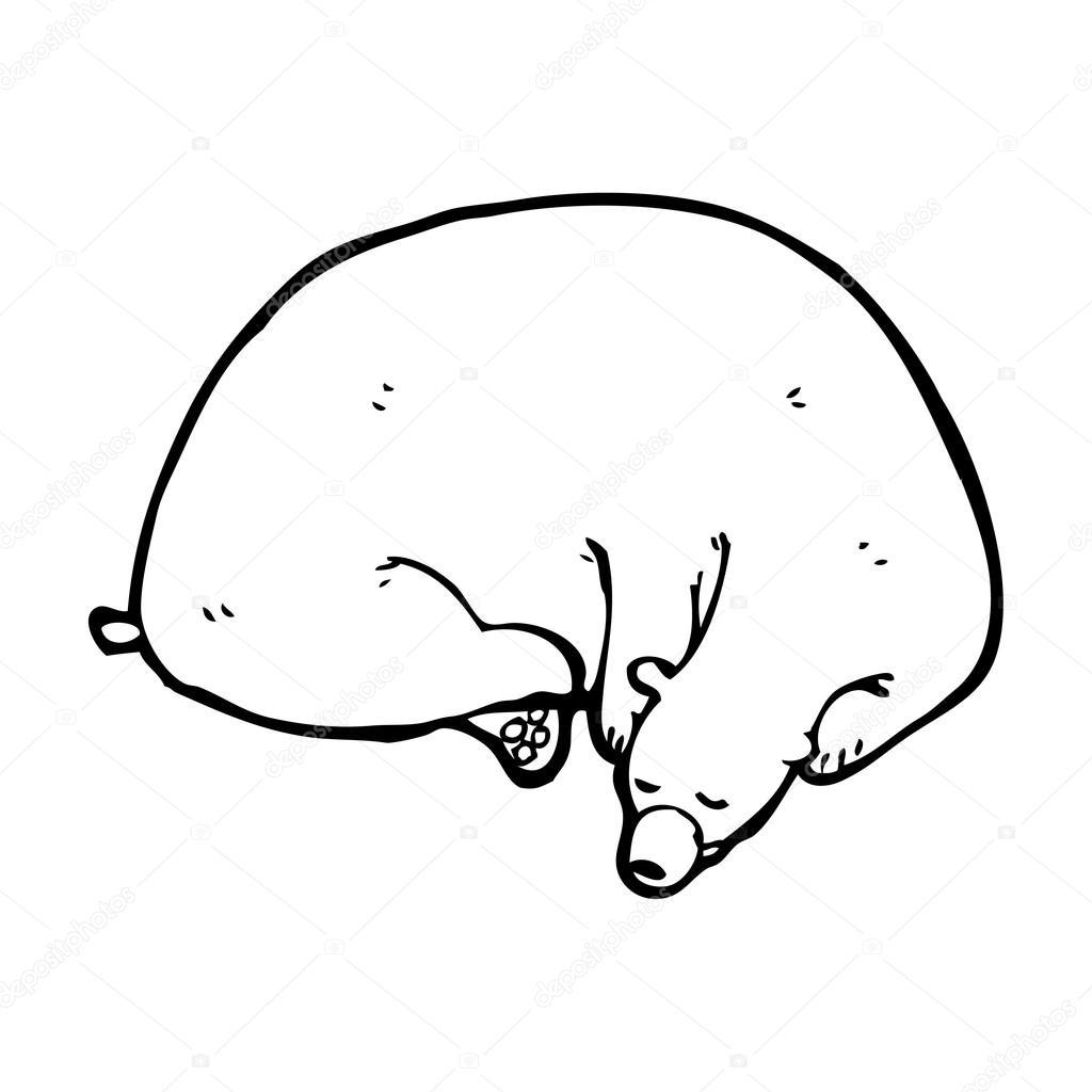 sleeping bear coloring page - hibernating bear clip art search results calendar 2015