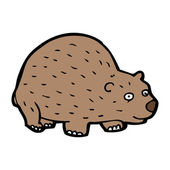 Wombat — Stock Vector