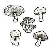 Mushroom collection — Vecteur