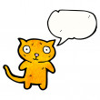 Cute cat with speech bubble    — Stock Vector