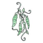 Climbing beans — Stock Vector