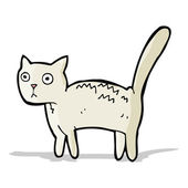 Cartoon skrämd katt — Stockvektor
