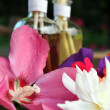 Aromatherapy bottles and flowers - Stock Photo