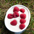 Raspberries in yogurt on the grass — Stock Photo