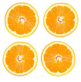Orange fruit on white background — Stock Photo