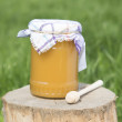 Honey jar on — Stock Photo