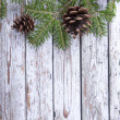 Christmas fir twig  on the wooden background — Stock Photo