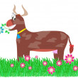 Brown cow in the meadow — Stockfoto