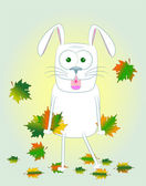 Rabbit with maple leaves — Stock Photo