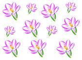 花朵 鲜艳 — 图库照片
