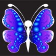 Butterfly on a black background - Stock Vector
