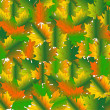 Background from maple leaves - Stock Photo