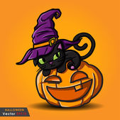Halloween black cat wearing witches hat and pumpkin — Stock Vector