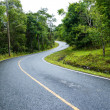Curve way of asphalt road through the green field — Stock Photo