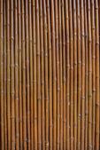 Bamboe muur achtergrond — Stockfoto