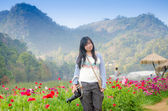 Beautiful Young Woman Meadow of Flowers — Stock Photo