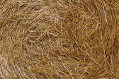 Straw background — Stock Photo