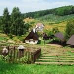 Rural idyll — Stock Photo