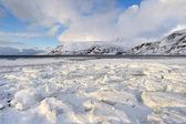зимний пейзаж — Стоковое фото